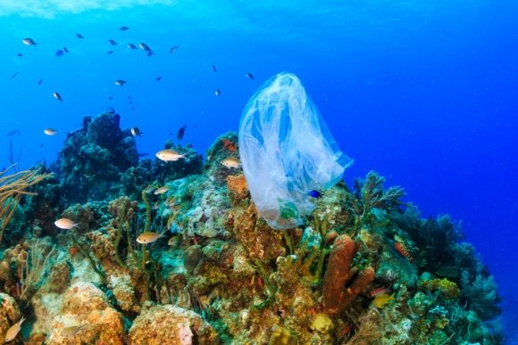 Plastic pollution:- a discarded plastic rubbish bags floats on a tropical coral reef presenting a hazard to marine life (Forrás: 123rf.com)